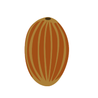 hueso aceituna